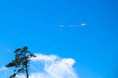 Kite in the sky and a lonely tree. Kite flying in blue sky above a lonely tree Stock Image
