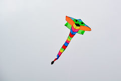 Kite in the sky Stock Images