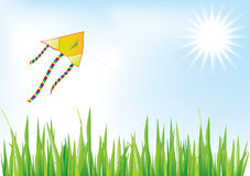 Kite,sky,sun,tussock Royalty Free Stock Images