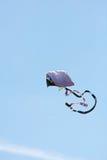 Kite Soars Against Blue Sky In Autumn Festival Royalty Free Stock Photos