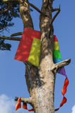 Kite stuck in a tree Stock Images