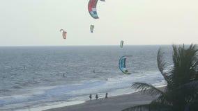 Kite surfers ashore stock video footage