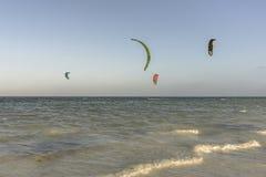 Kite surfers  on Zanzibar beach Royalty Free Stock Photo