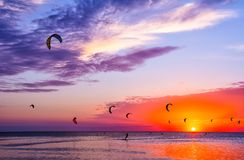 Kite-surfing against a beautiful sunset. Many silhouettes of kit