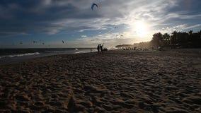 Kitesurfers at sunset time stock video