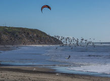 Kite surfing with birds stock photo
