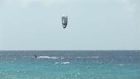 Kite surfing on Bonaire stock footage