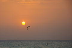 Kite Surfing At Sunset Stock Images