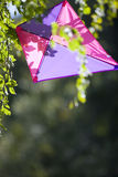 Kite in tree Royalty Free Stock Photography
