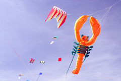Kite wind on the beach Royalty Free Stock Photos