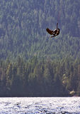 Kiteboarder getting some big air. A male kiteboarder catching some big air at Nimpkish Lake, British Columbia, Canada stock photos