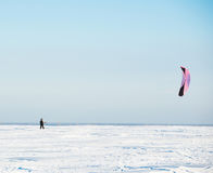 Kiteboarder z kanią na śniegu obrazy royalty free