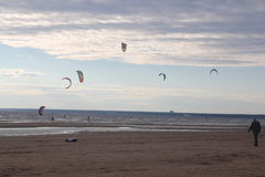 Kiteboarding ,cold and beach or nature. Beautiful kites , cold, beach of Ladoga lake in Russia Stock Photography