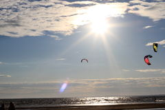 Kiteboarding , sun and beach or nature. Beautiful kites , sun is shining brightly, beach of Ladoga lake in Russia royalty free stock photography