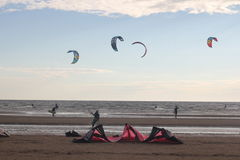 Kiteboarding , sun and beach or nature. Beautiful kites , sun is shining brightly, beach of Ladoga lake in Russia stock images