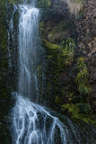 Kitekite falls, Waitakere Ranges, New Zealand Royalty Free Stock Image