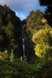 KiteKite Waterfall Piha Stock Image