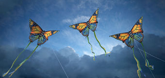 Kites Royalty Free Stock Photo