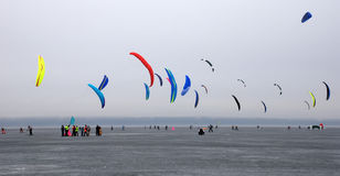 Kites. Bright kites against the grey foggy sky stock photography