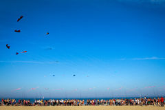 Kites. CERVIA - APRIL 28 :the International Kite festival on the beach, from April 21 to May 1,April 28, 2012 in Cervia,Italy Royalty Free Stock Photos