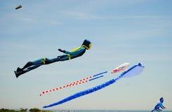 kites Foto de Stock
