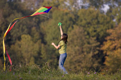 Kites. In the fall of the kites is a popular hobby Stock Photos