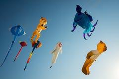 kites Fotos de Stock