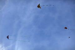 kites Imagem de Stock Royalty Free