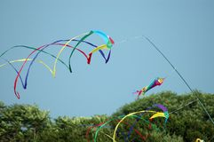 Kites in action on Cape Cod Massachusetts Stock Photography