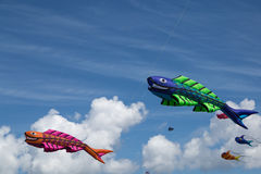 Kites against a blue sky Stock Photos