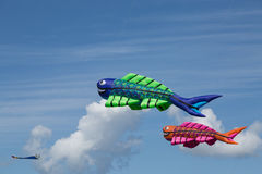 Kites against a blue sky. Kite festival with numerous flying kites on a summer day at the beach Stock Photo