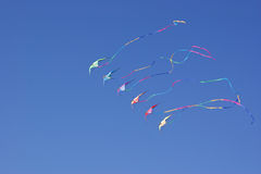 Kites against sky Royalty Free Stock Photos
