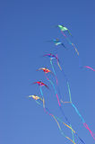 Kites against a vivid blue sky Stock Photography