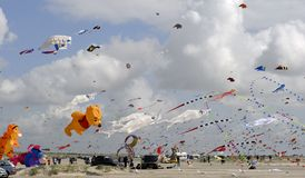 Kites all over the beach Stock Photos