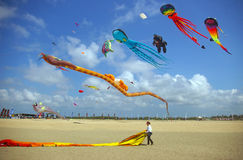 Kites at Beach Games Stock Image