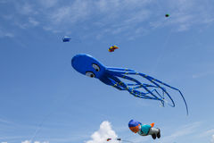 Kites on a blue sky Royalty Free Stock Photo