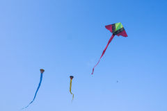 Kites on the blue sky Stock Image