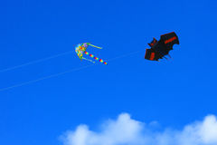 Kites on blue sky Stock Image