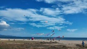 Kites at Cagliari Royalty Free Stock Image