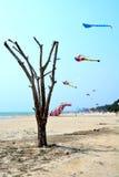 The kites on cha-am. The kites festival on cha-am  Thailand Royalty Free Stock Photos