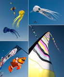 Kites. Colorful kites in sun light collage Stock Image