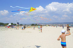 Kites Festival on the beach Royalty Free Stock Photos