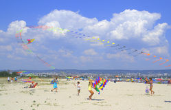 Kites Festival on the beach Royalty Free Stock Images