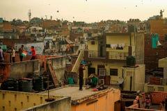 Kites festival in India, Delhi
