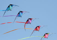 Kites in flight Stock Photography