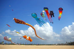 Kites flying on the beach Stock Photos