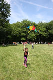 Kites flying day Royalty Free Stock Photos