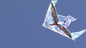 Kites flying in the sky stock video