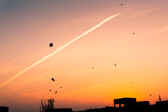 Kites flying at sunset. In Jaipur against teh silhouette of buildings. This is in celebration of Makar Sankranti or Uttarayan Royalty Free Stock Photo