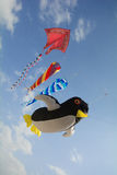Kites riding the winds, up in the sky Royalty Free Stock Photo